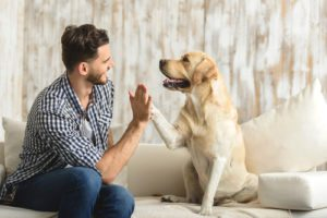 Pets Can Be Helpful in Addiction Treatment