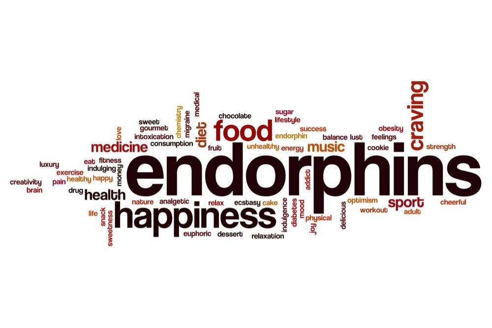 Endorphins Play a Key Role in Addiction